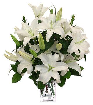 white-lilies-320